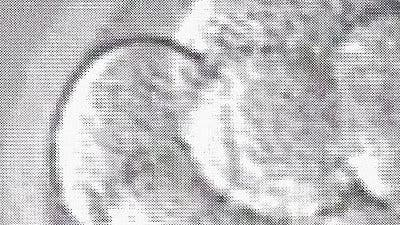 Embryo_teaser