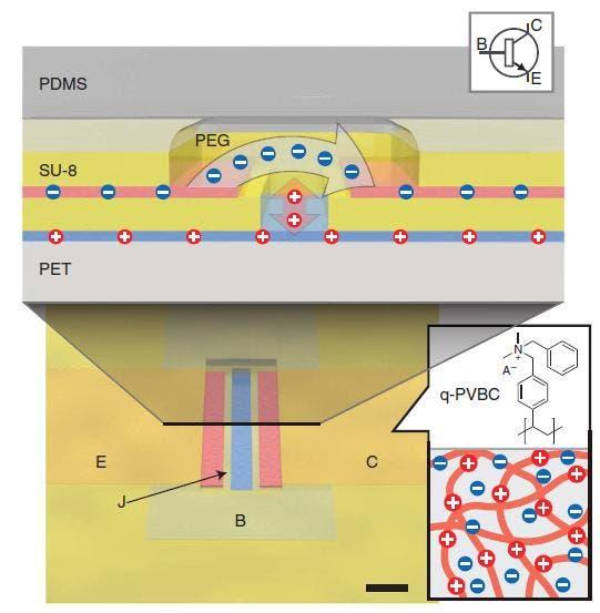Chemischer Transistor