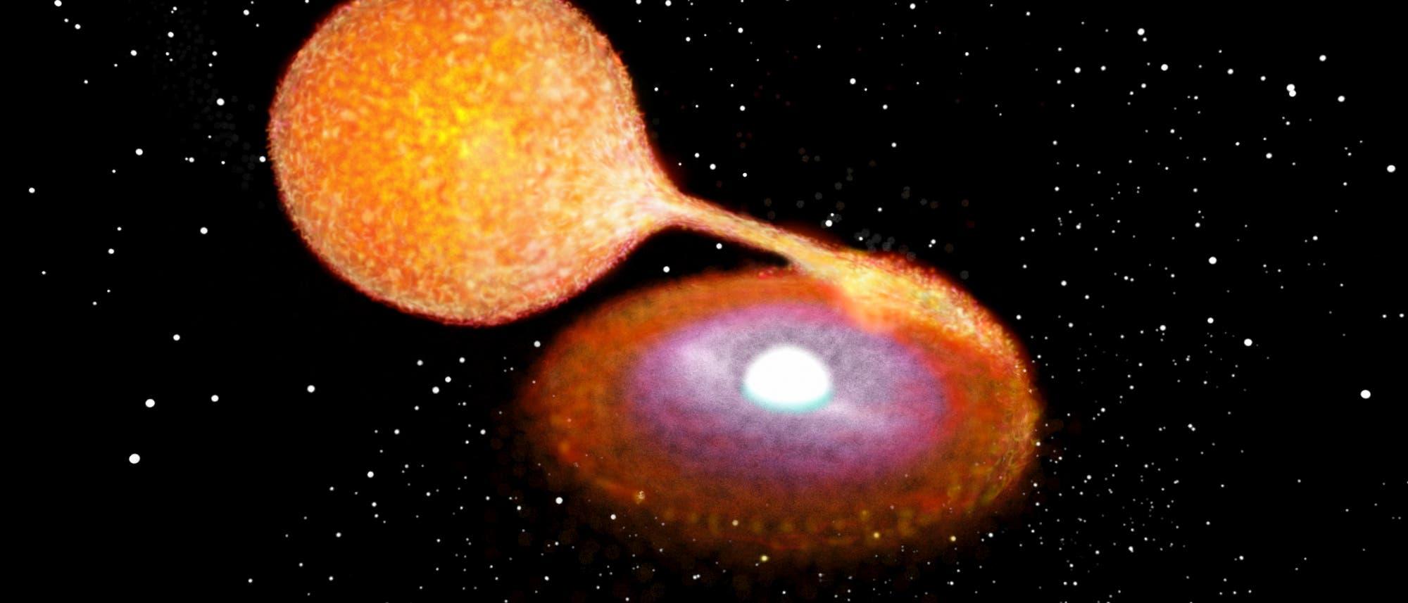 Das Doppelsternsystem des Weißen Zwergs LP 40-365 (künstlerische Darstellung)