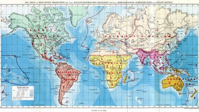 Alfred Russel Wallaces Weltkarte zur Verteilung der Tiere