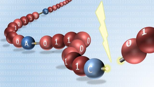 Digitaler Datenspeicher aus Polymeren