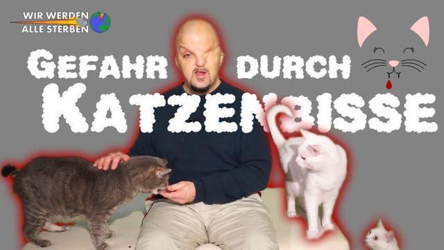 """Titelbild der WWAS-Folge """"Katzenbisse"""""""