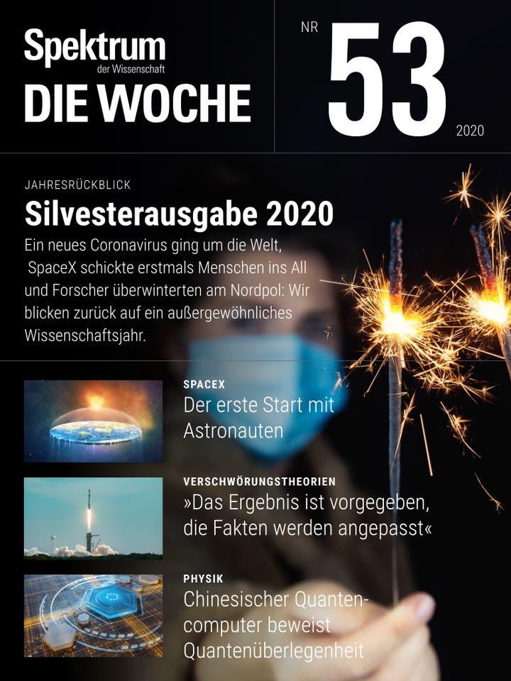 53/2020