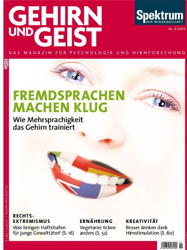GuG_2013_6_ges (pdf)