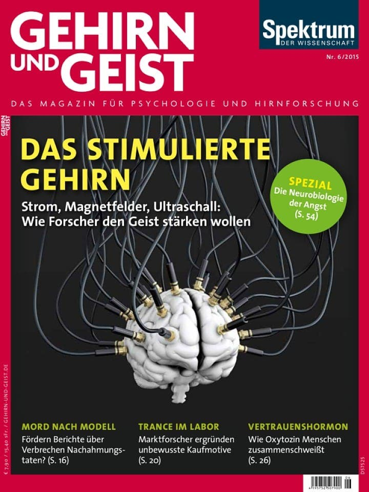 GuG_2015_06_ges (pdf)
