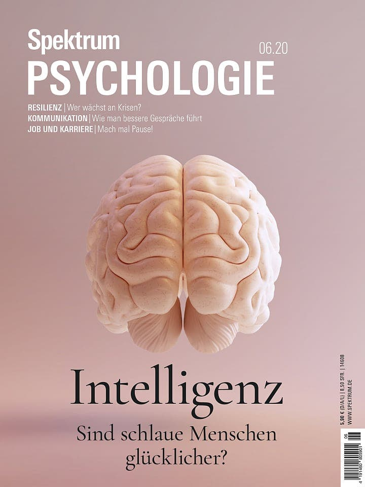 Spektrum Psychologie:  Intelligenz