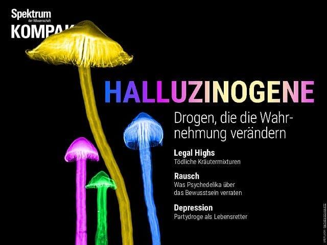 Spektrum Kompakt:  Halluzinogene – Drogen, die die Wahrnehmung verändern