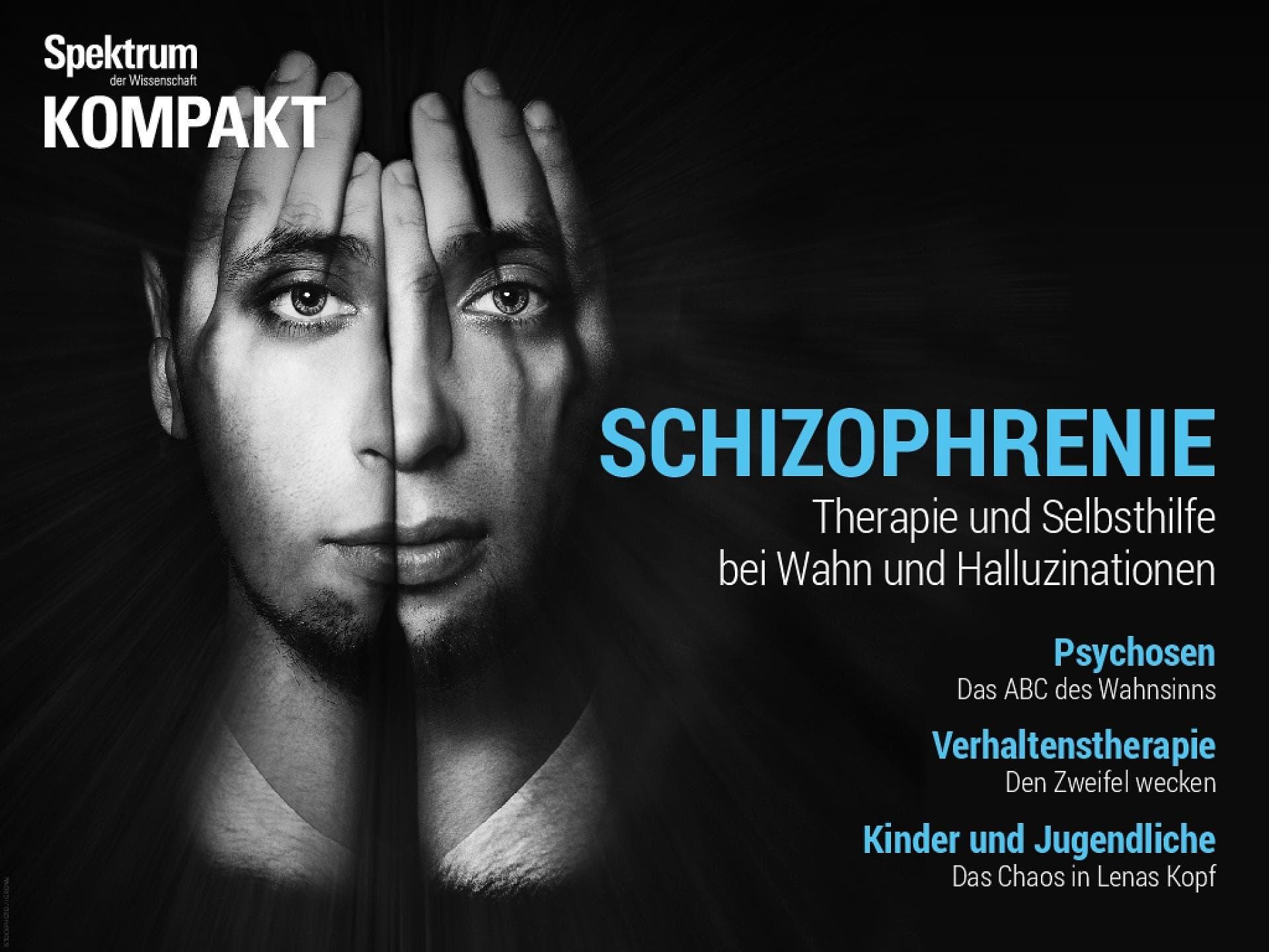 Schizophrenie - Therapie und Selbsthilfe bei Wahn und Halluzinationen