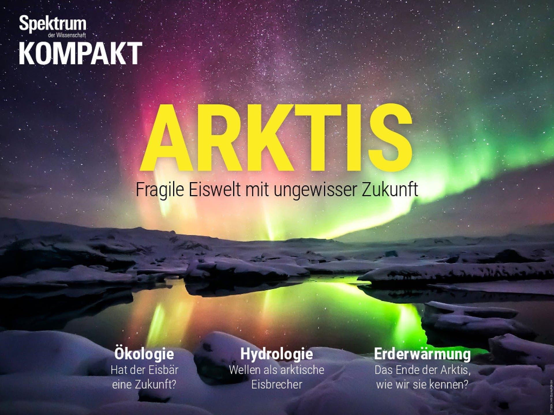 Arktis - Fragile Eiswelt