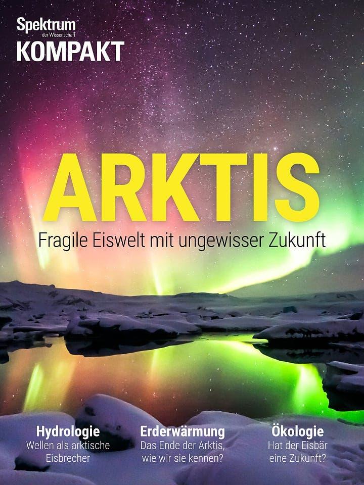 Spektrum Kompakt:  Arktis – Fragile Eiswelt