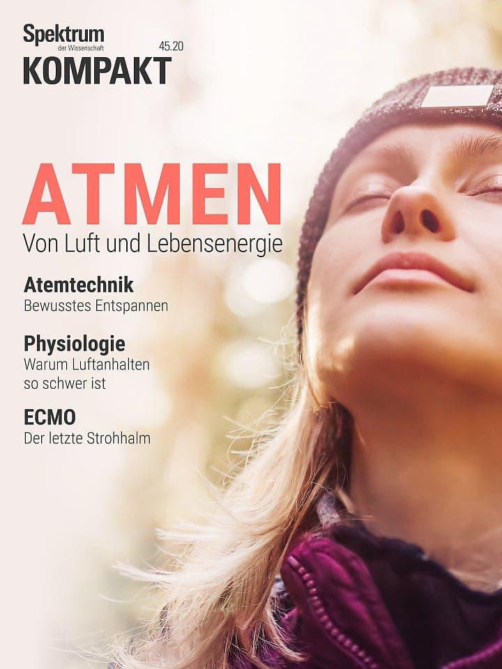 Spektrum Kompakt:  Atmen – Von Luft und Lebensenergie