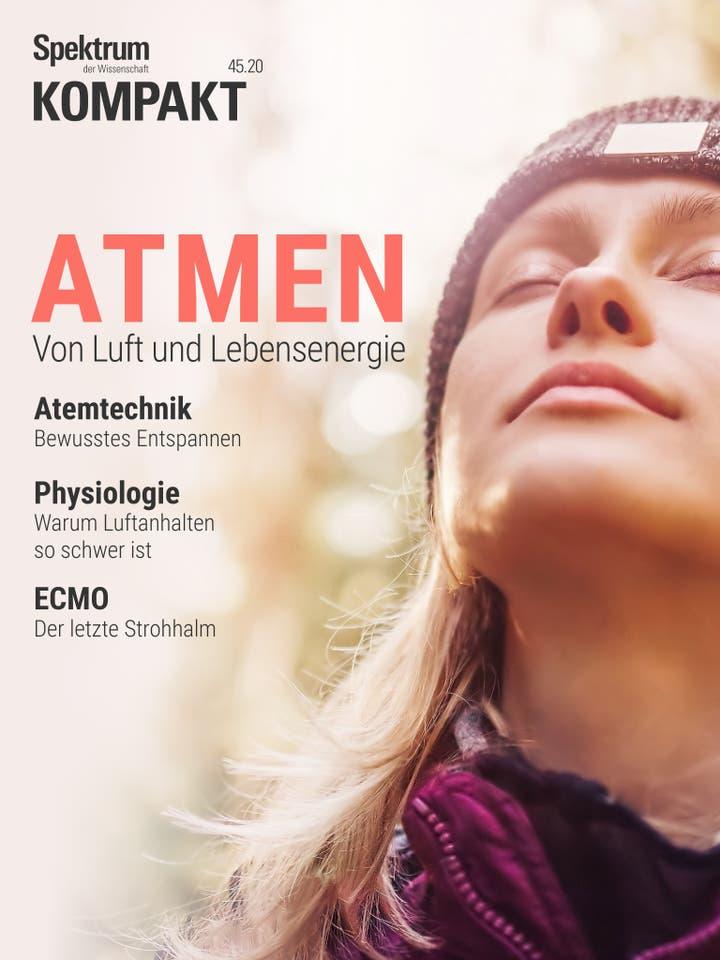Atmen - Von Luft und Lebensenergie