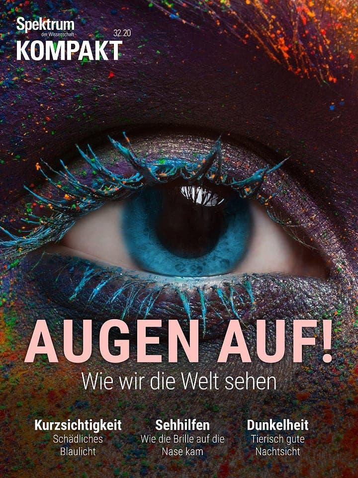 Spektrum Kompakt:  Augen auf! – Wie wir die Welt sehen