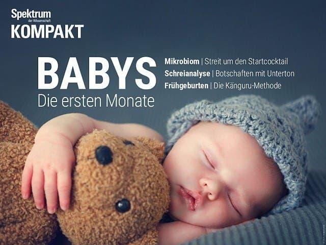 Spektrum Kompakt:  Babys – Die ersten Monate