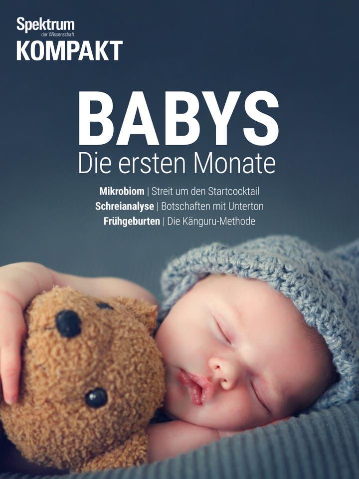 Babys – Die ersten Monate