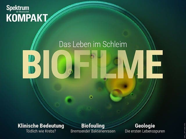 Spektrum Kompakt:  Biofilme – Das Leben im Schleim