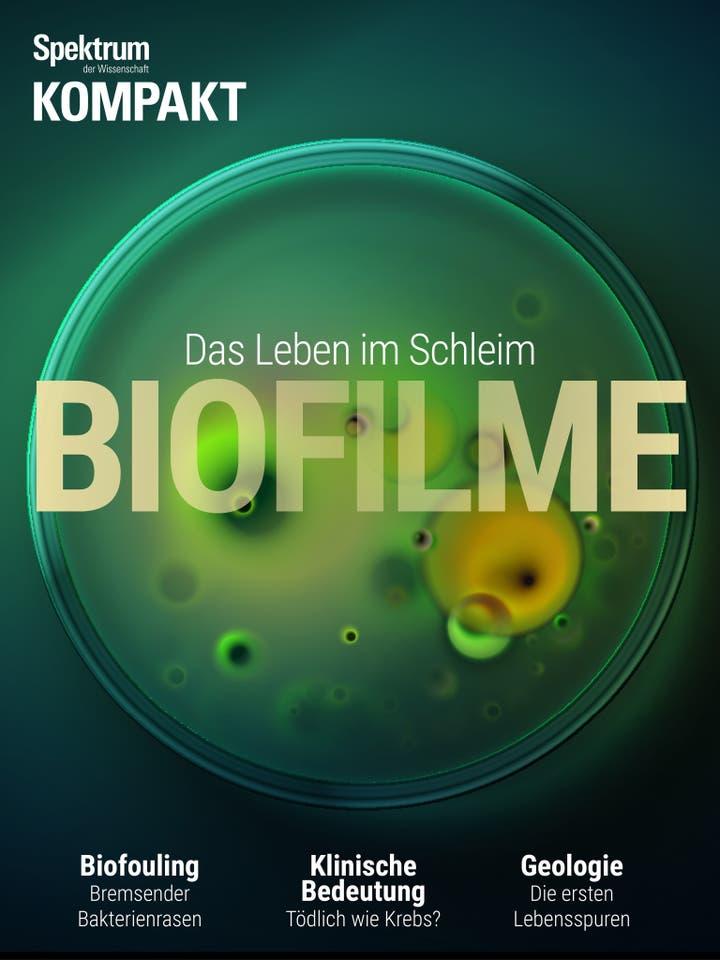 Biofilme – Das Leben im Schleim