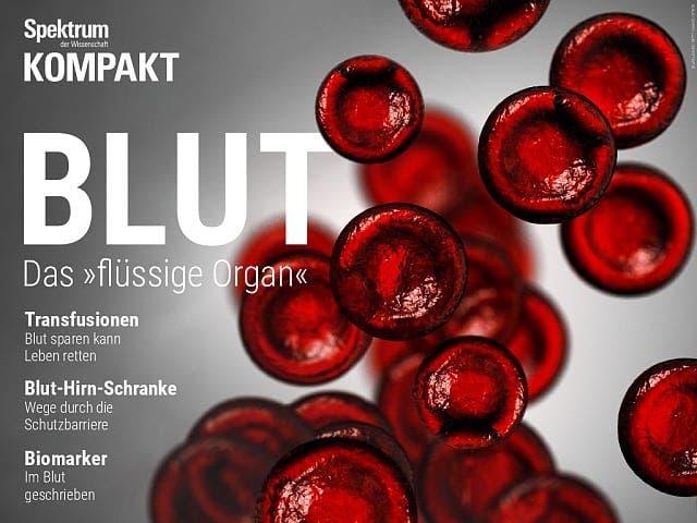 """Spektrum Kompakt:  Blut – Das """"flüssige Organ"""""""