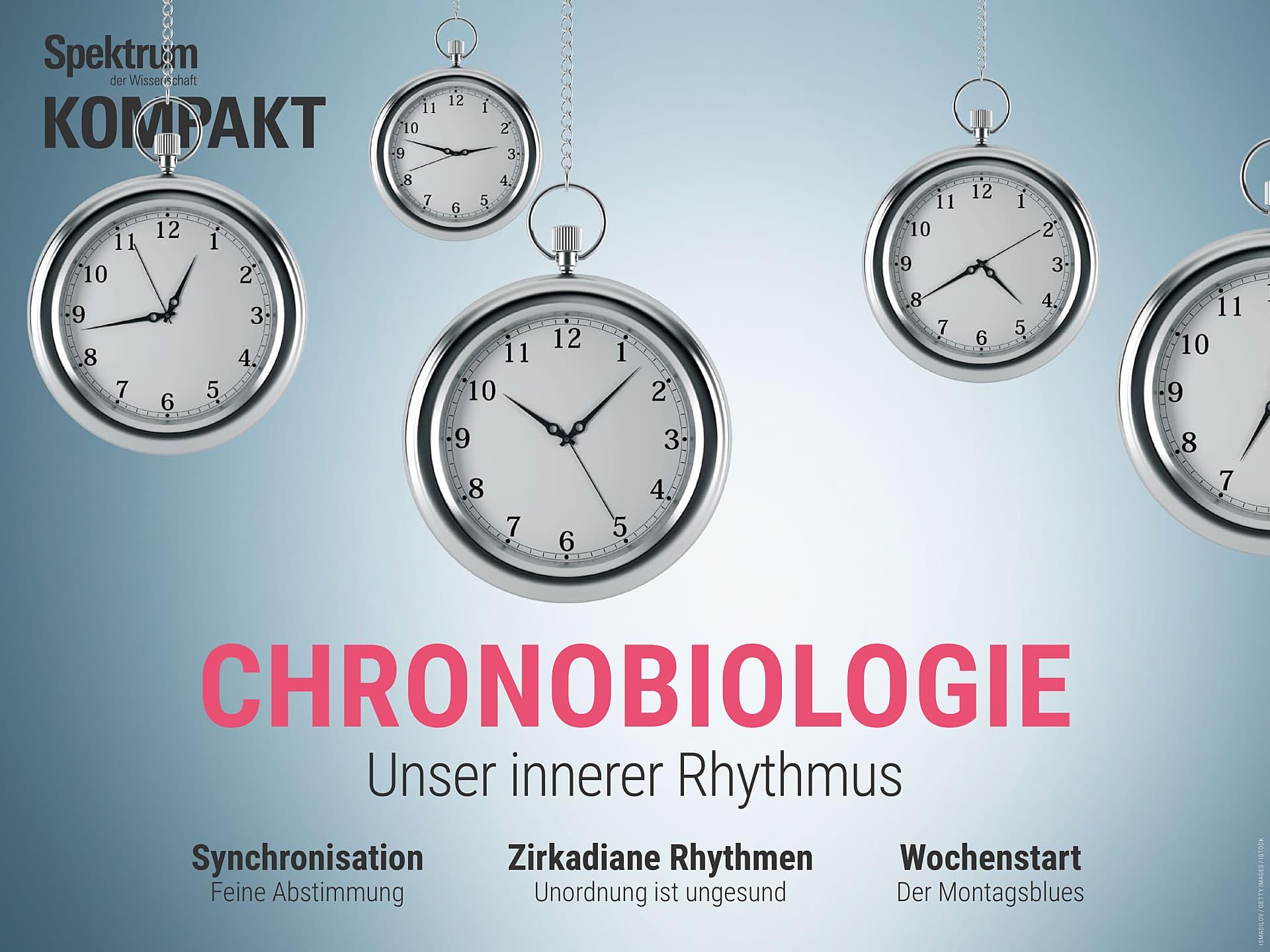Chronobiologie - Unser innerer Rhythmus