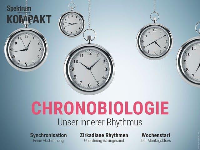 Spektrum Kompakt:  Chronobiologie – Unser innerer Rhythmus