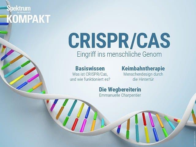 Spektrum Kompakt:  CRISPR/Cas – Eingriff ins menschliche Genom
