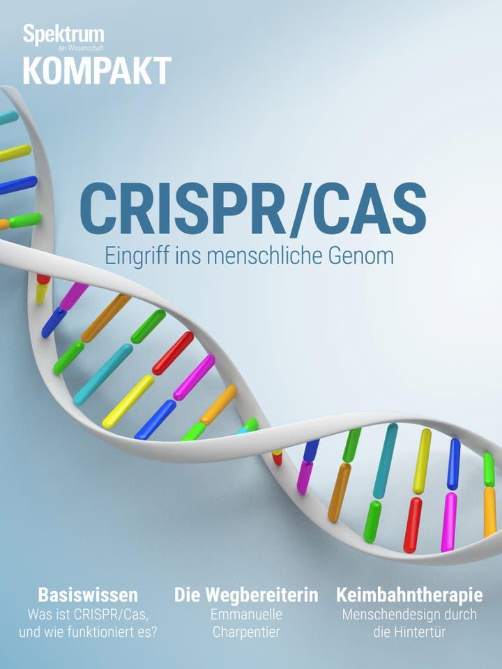 CRISPR/Cas - Eingriff ins menschliche Genom