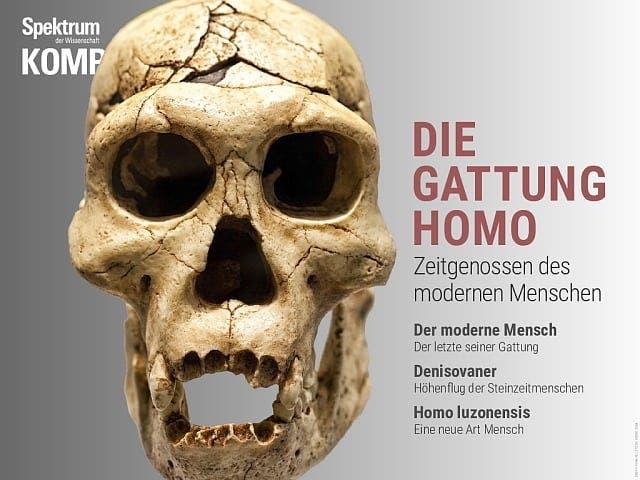 Spektrum Kompakt:  Die Gattung Homo – Zeitgenossen des modernen Menschen