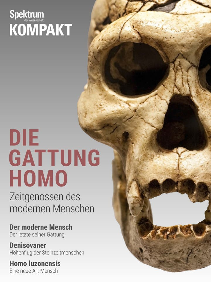 Die Gattung Homo – Zeitgenossen des modernen Menschen
