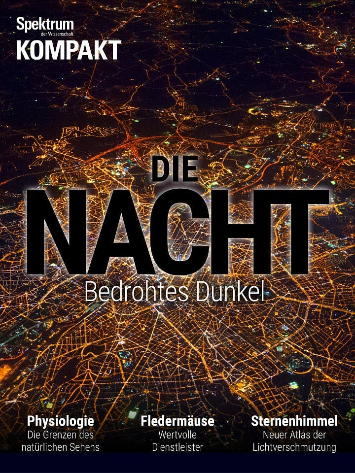 Spektrum Kompakt:  Die Nacht – Bedrohtes Dunkel