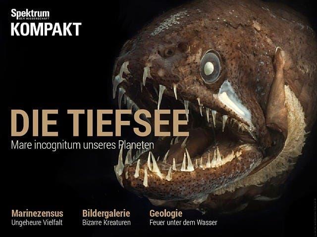 Die Tiefsee - Mare incognitum unseres Planeten
