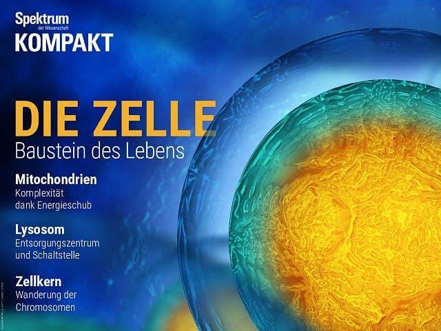 Spektrum Kompakt:  Die Zelle – Baustein des Lebens