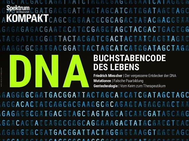 Spektrum Kompakt:  DNA – Buchstabencode des Lebens