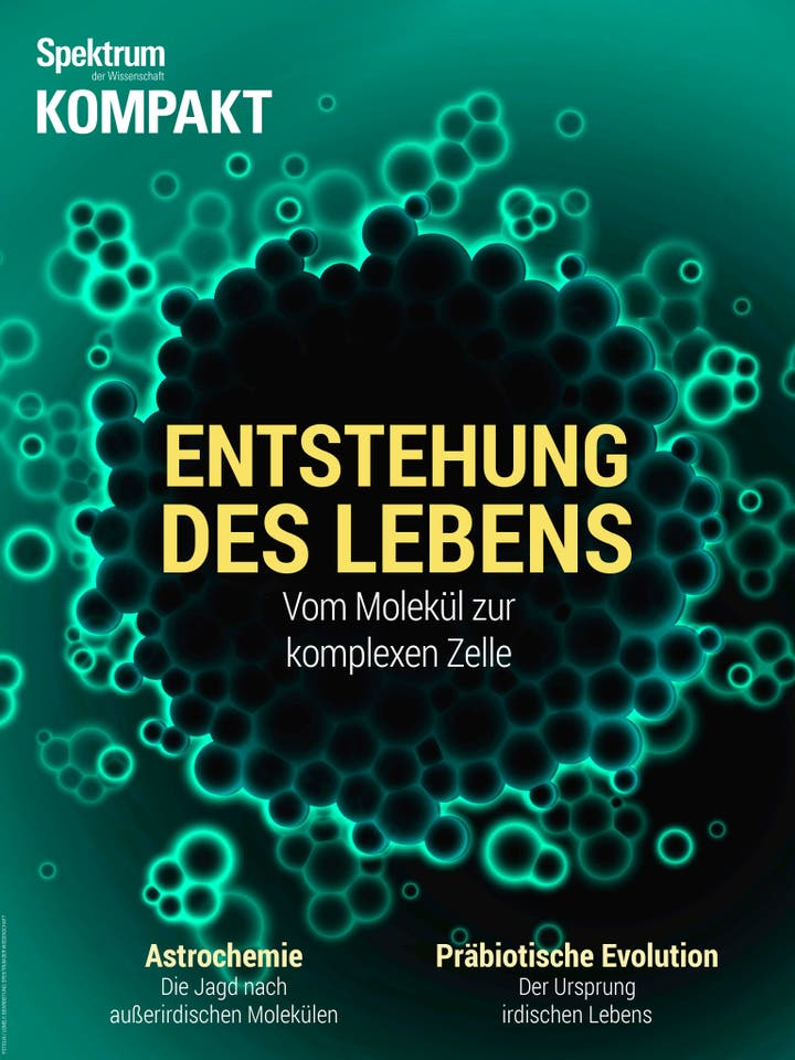 Entstehung des Lebens - Vom Molekül zur komplexen Zelle