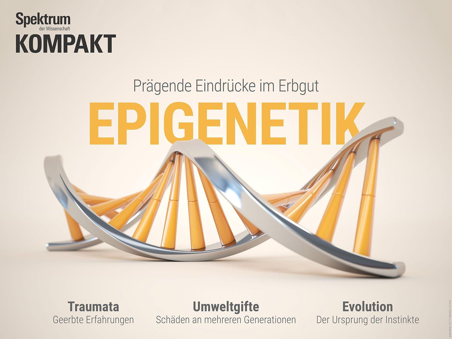 Epigenetik - Prägende Eindrücke im Erbgut