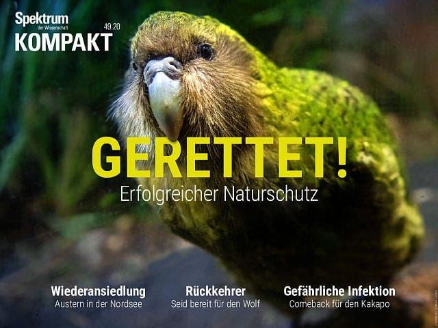 Spektrum Kompakt:  Gerettet! – Erfolgreicher Naturschutz