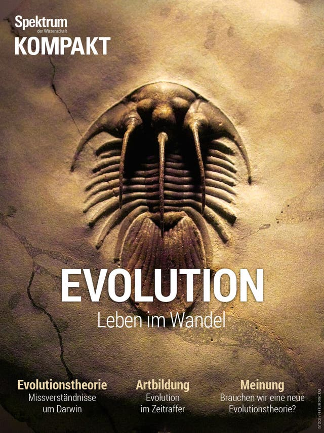 Evolution - Leben im Wandel