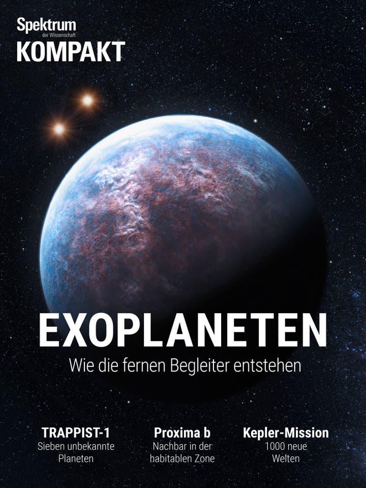 Exoplaneten – Wie die fernen Begleiter entstehen