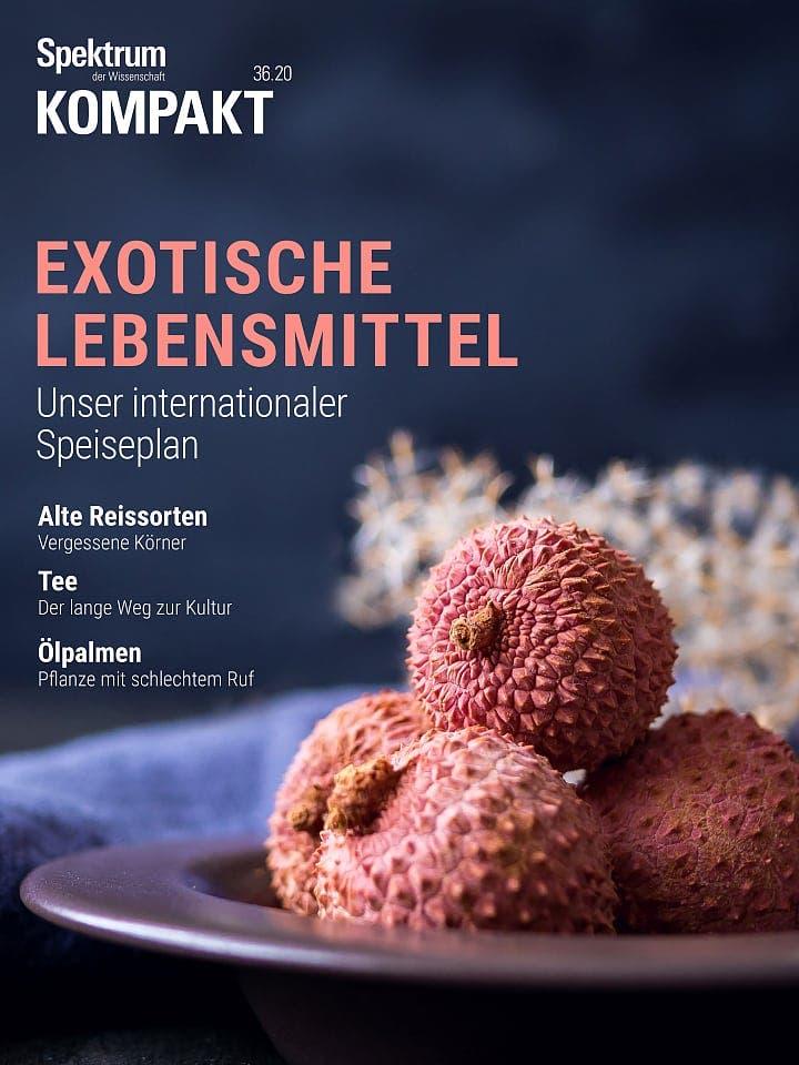 Spektrum Kompakt:  Exotische Lebensmittel – Unser internationaler Speiseplan