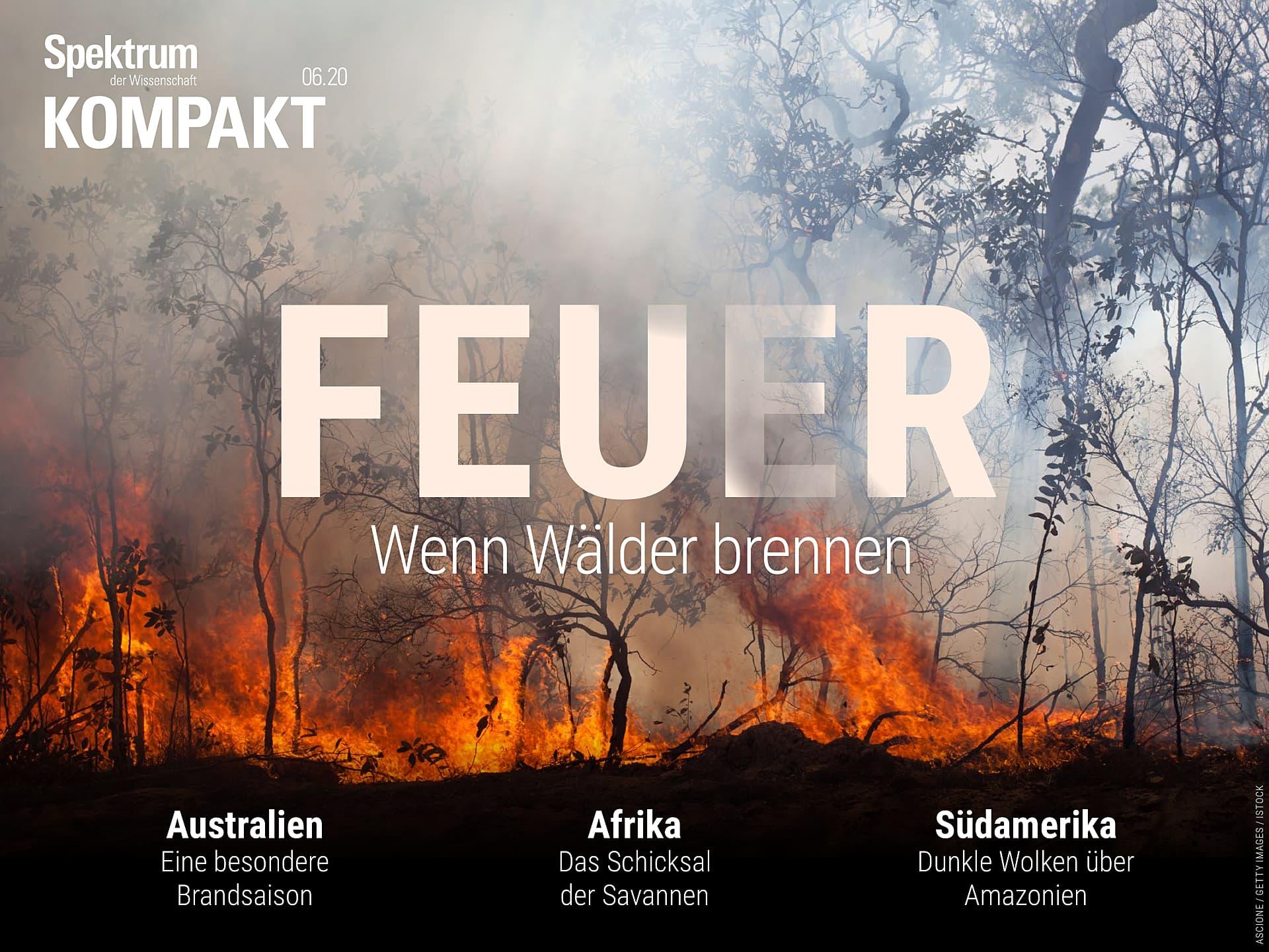 Feuer - Wenn Wälder brennen