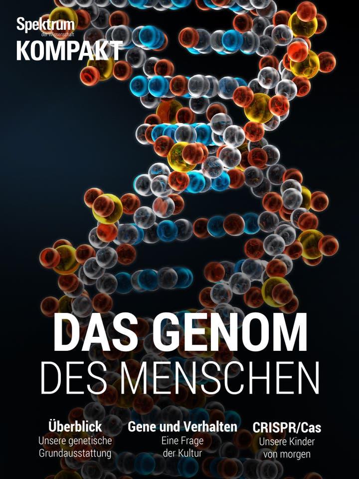 Das Genom des Menschen