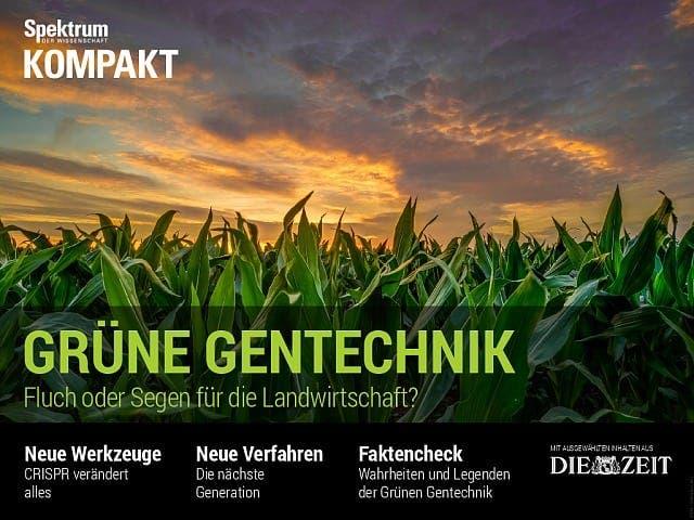 Spektrum Kompakt:  Grüne Gentechnik – Fluch oder Segen für die Landwirtschaft?