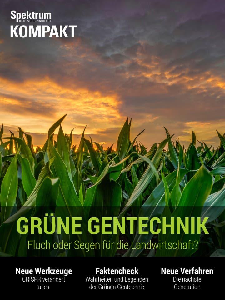 Grüne Gentechnik - Fluch oder Segen für die Landwirtschaft?