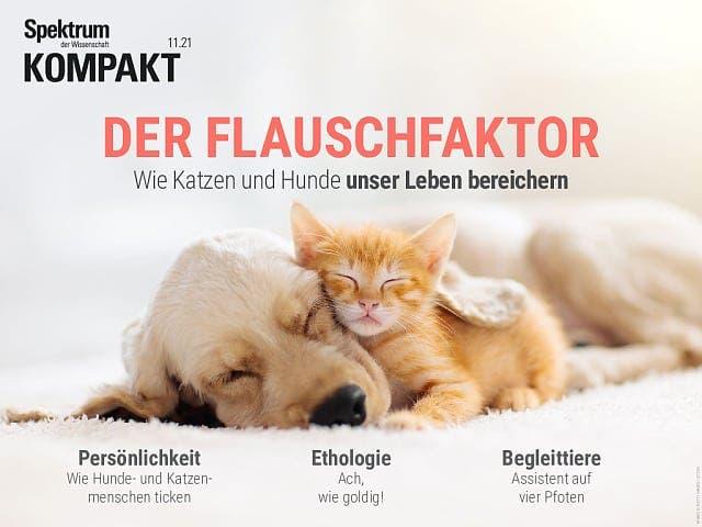 Spektrum Kompakt:  Der Flauschfaktor – Wie Katzen und Hunde unser Leben bereichern