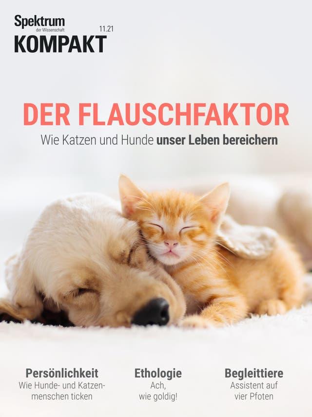 Der Flauschfaktor - Wie Katzen und Hunde unser Leben bereichern