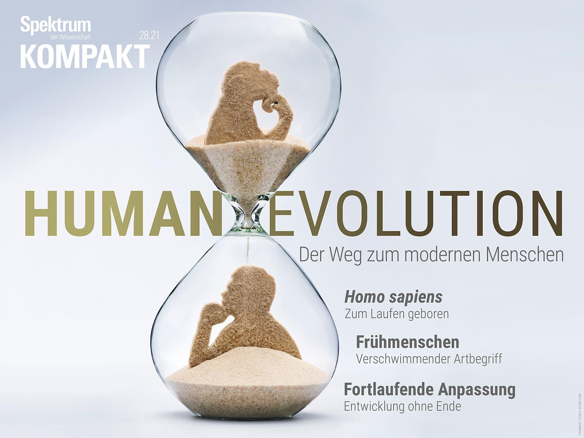Humanevolution – Die Entstehung des modernen Menschen