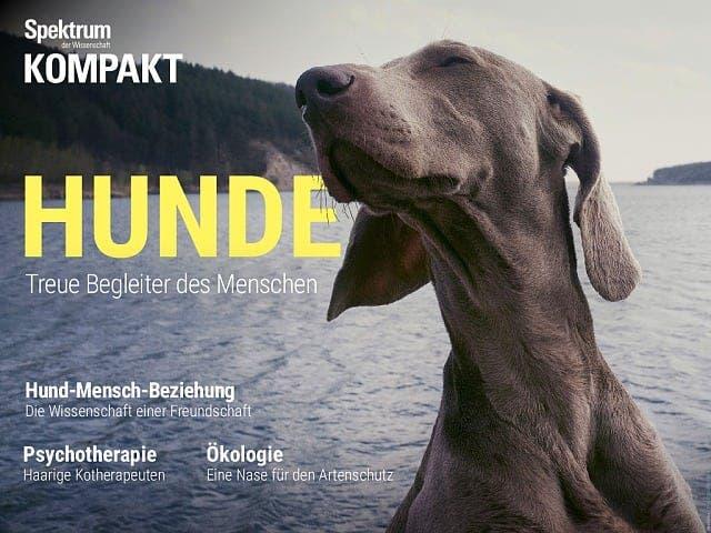 Spektrum Kompakt:  Hunde – Treue Begleiter des Menschen