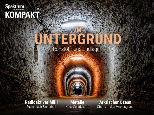 Spektrum Kompakt:  Im Untergrund – Rohstoff- und Endlager
