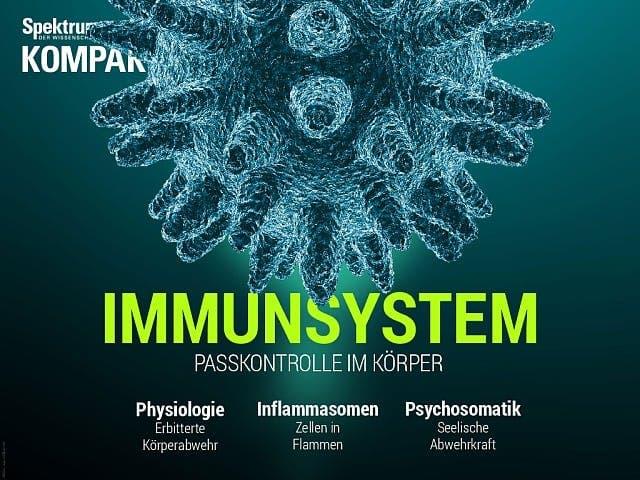 Spektrum Kompakt:  Immunsystem – Passkontrolle im Körper