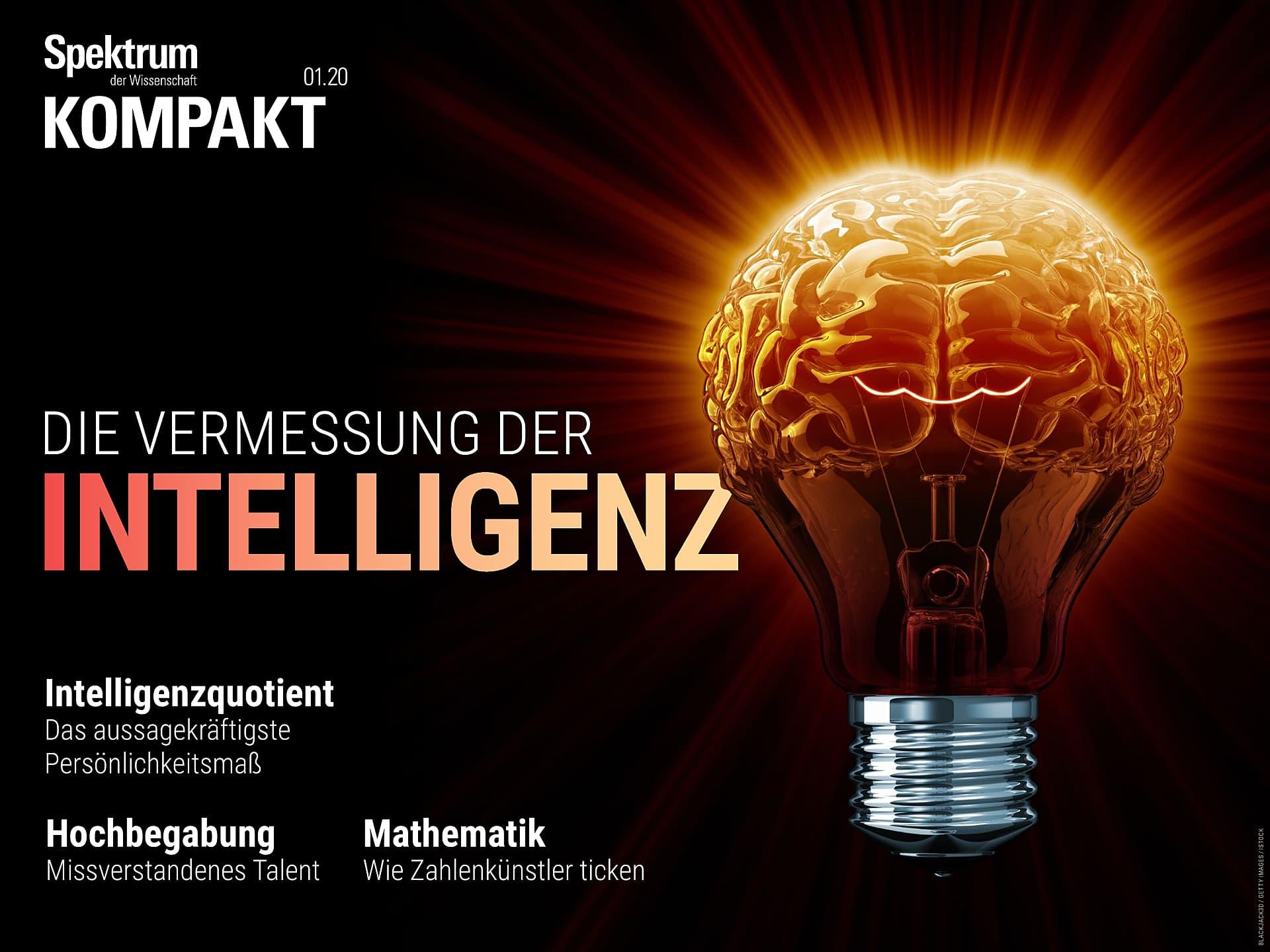 Die Vermessung der Intelligenz