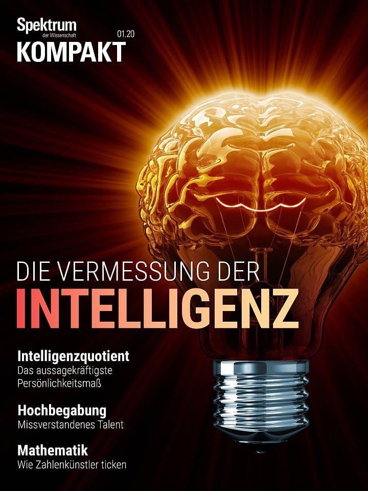 Spektrum Kompakt:  Die Vermessung der Intelligenz